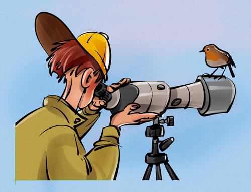 Birdwatcher-749506